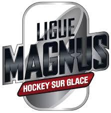 Finales de Ligue Magnus 2017 : Imbroglio autour de la diffusion du match 6